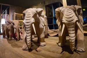 elephants indonesie teck massif