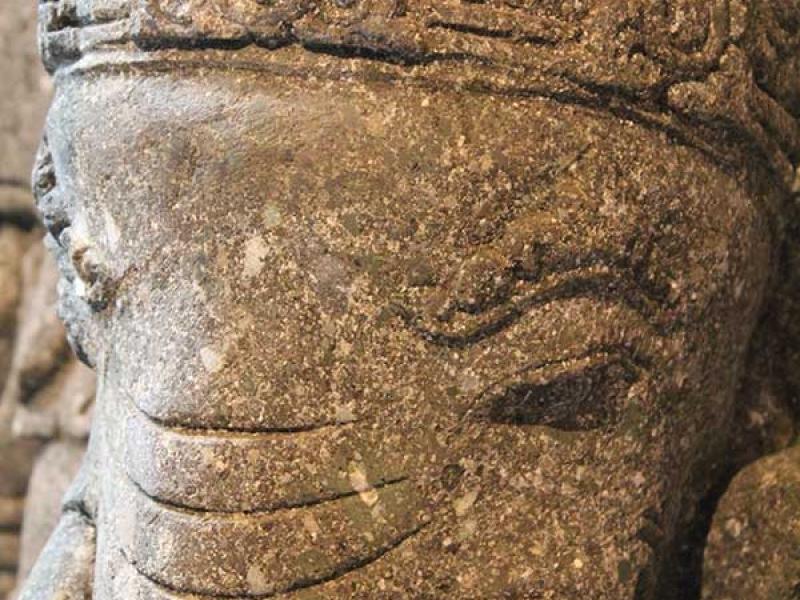 tete-elephant-pierre
